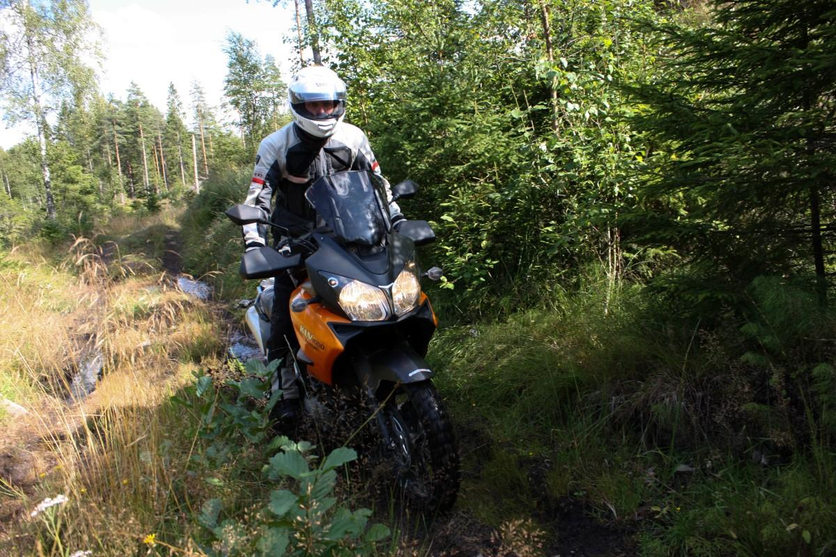 test michelin anakee wild 11